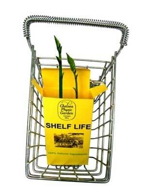 shelf life-อายุในการเก็บ
